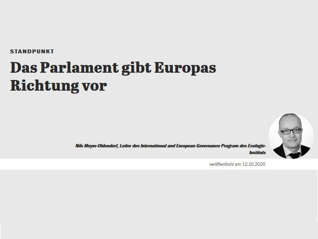 "Title of the publication ""Das Parlament gibt Europa die Richtung vor"" and picture of the author"
