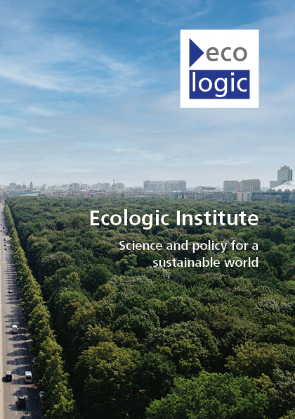 Cover of the Ecologic Institute brochure 2020