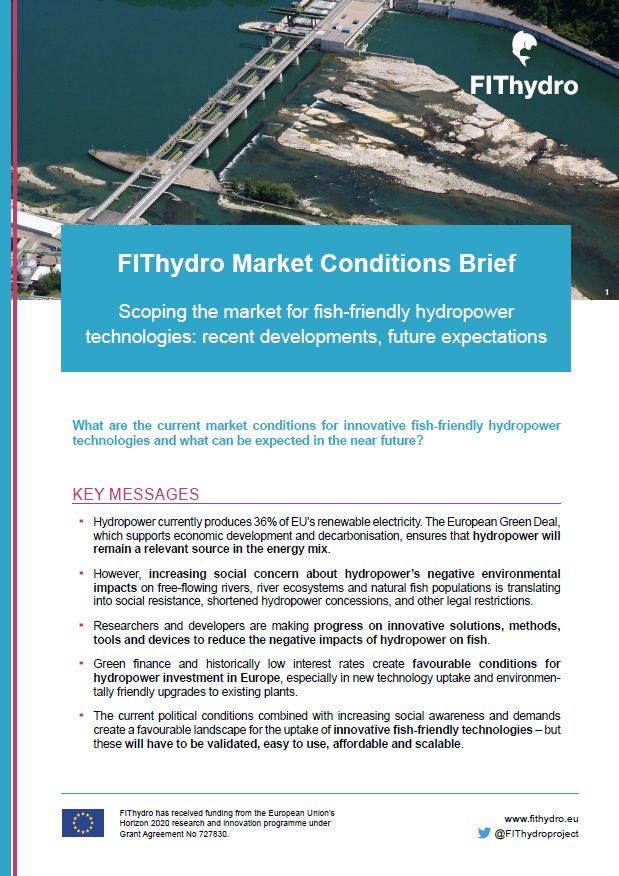 Cover FitHydro Policy Brief