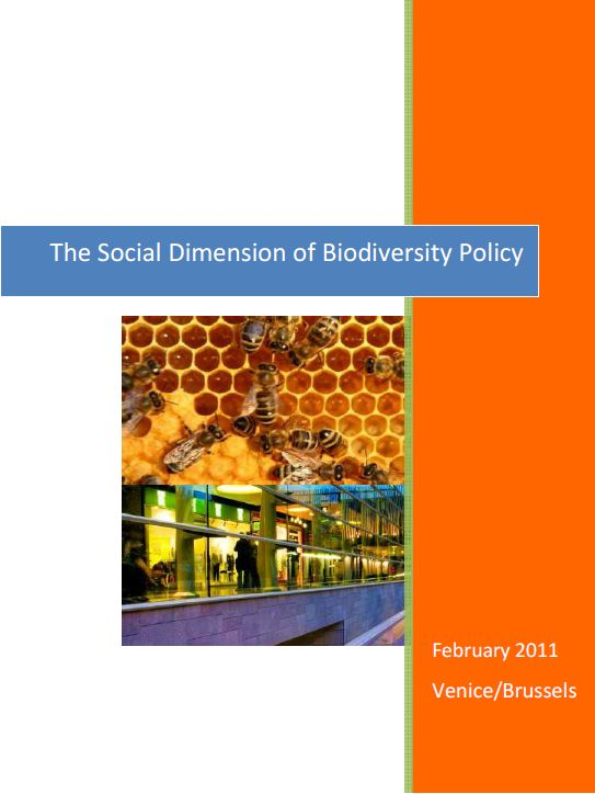 what is social policy pdf